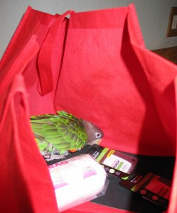 OW in red bag